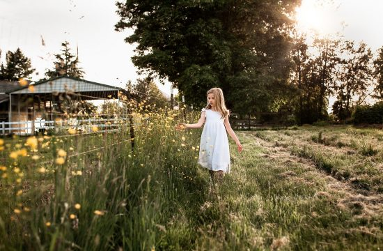 little girl at a farm during spring walking along a fence like, little girl wearing a white dress at a farm, wild hearts farm Puyallup, sun drenched field milestone session